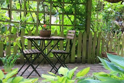 une composition de plantes grasses du jardinage. Black Bedroom Furniture Sets. Home Design Ideas