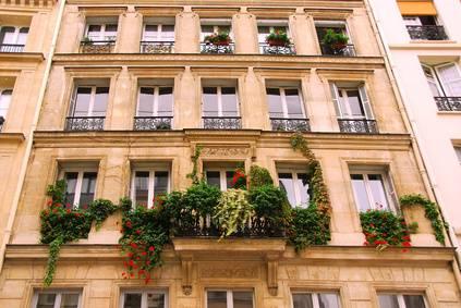 planter une vigne sur son balcon